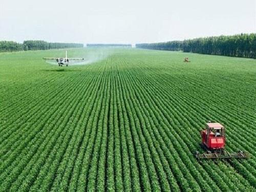 新农民:会种、会卖、会包装