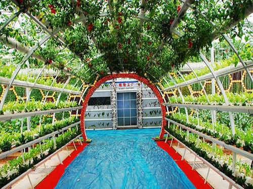 松下交付首例大型植物工厂系统