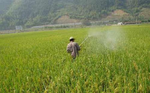 农业环保新主张:农药瓶回收