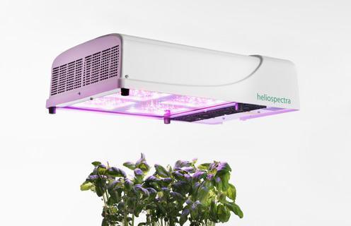 新型LED照明系统助力植物研究