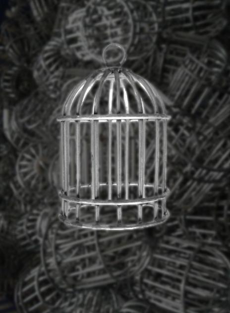 超级小铁线鸟笼