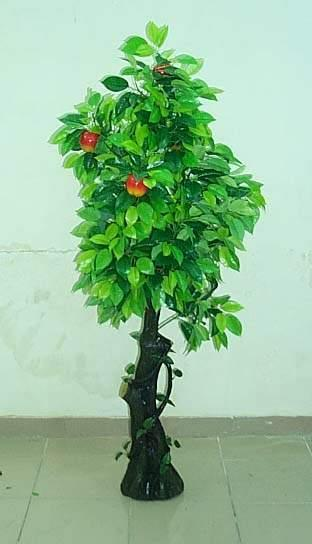 苹果树简笔画大全_苹果树简笔画图片