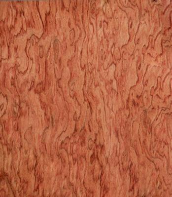 建筑和装饰材料 木料和板材