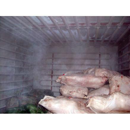 水产肉类冷库