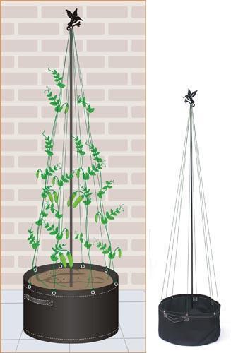 豌豆种植袋(31089)
