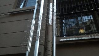 不锈钢管道防爬刺图片