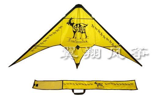 风筝的图案设计文字说明