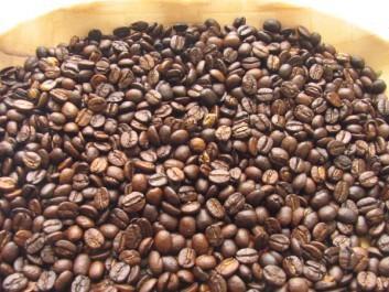 云南咖啡豆种类_云南生咖啡豆
