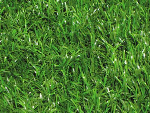 人造草坪 (DST-矩形双色草)  人造草坪 (DST-矩形双色草) 订货量(件) 价格(元/件