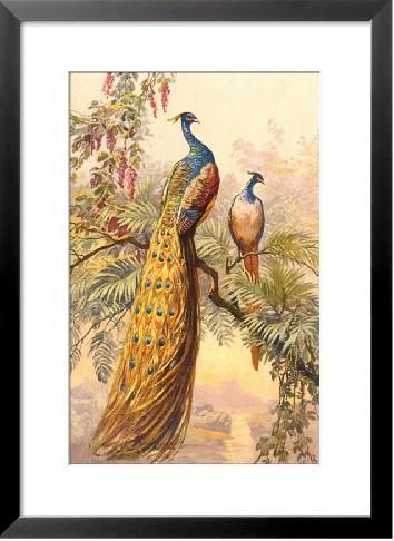 动物系列纯手绘油画