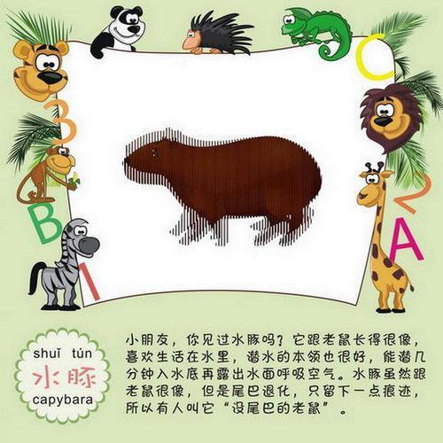 海豚,蝶鱼等10多个海洋动物的简笔画     森林世界:包括猴子,老虎,小