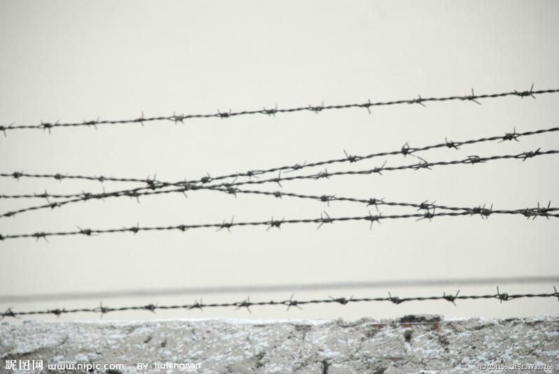 厂区围墙铁丝网