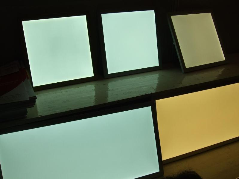 LED平板灯里进虫