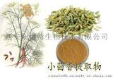 小茴香提取物 10: 1 莳萝子提取物