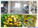 果汁生产线 果蔬加工设备专家