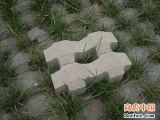 扬州草坪砖厂13665206150