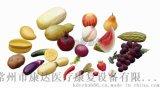 康復產品,康復器材,仿真水果