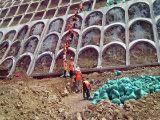 黑龙江植生袋,荒山绿化植草袋