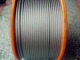 浅析购买涂塑钢丝绳需要关注哪些方面?