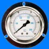 轴向带边压力表 (电话联系,价格更低)