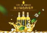 绿达纯野生山茶油500mLx2瓶高档礼盒