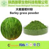 纯天然无添加有机无农残 水溶性大麦苗若叶粉 青汁粉 大麦苗粉