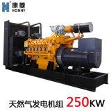 燃气发电机组250kw科克沼气发电机, 瓦斯 ,天然气发电机