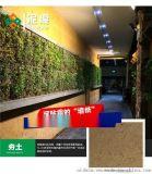 江苏盐城硅藻泥加盟 泥度硅藻泥背景墙 硅藻泥品牌