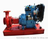 双缸柴油机水泵机组 各式柴油机水泵机组 ZH2110D柴油机