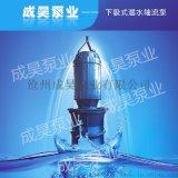 潜水轴流泵生产销售