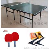 双鱼乒乓球台 广州乒乓球台厂家 201移动式乒乓球台