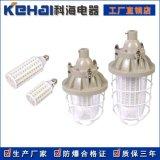 隔爆型LED防爆玉米灯 20W 30W