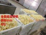 豆芽机,商用豆芽机,自动豆芽机,武汉豆芽机,厂家直销保修3年