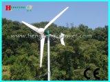 2kw风力发电机 大风车样式风力发电机 农场用风力发电机