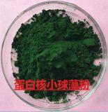 异养食品级蛋白核小球藻粉
