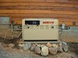 静音式发电机组, 220V发电机, 380V发电机