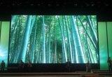 攀枝花高刷弧形屏强力巨彩室内黑龙T2.0全彩