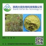 天然槐米提取物-槲皮素