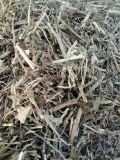 山东花生秧草粉价格  优质花生秧羊草