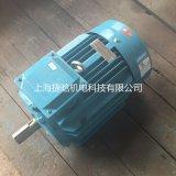 YE2B-160L-6油泵电机,11KW-6P三相异步电动机