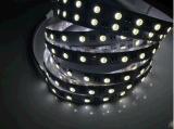 厂家直销5050RGBW LED灯带