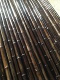 FD-161021厂家大量批发自然紫竹/自然黑色竹竿