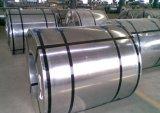 韩国浦项无花无油环保镀锌DX51D+Z(1.2--4.0mm/300Z--720Z)
