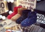 2015秋冬韩版星星雪地靴加厚保暖棉靴平底靴短靴女棉鞋女厂家直销