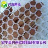 养殖鸡床网 塑料平网厂家 养殖铺垫网