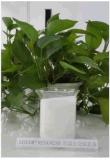 LOTER®923A 包裝膠乳液