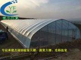 蔬菜大棚,拱棚材料供应,承建安装