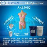 human body/器官模型专用硅胶,人体硅胶