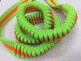 义乌宠物用品新款牵引绳 伸缩弹力织带
