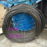 麻芯钢丝绳 麻心镀锌钢丝绳 电动葫芦钢丝绳